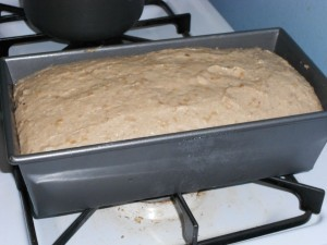 Image of risen dough in pan after first 70 minutes of rising