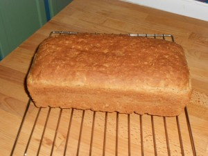 GF Bread, January 10, 2012