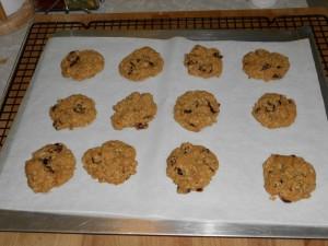 GF Vegan Oatmeal Craisin Cookies